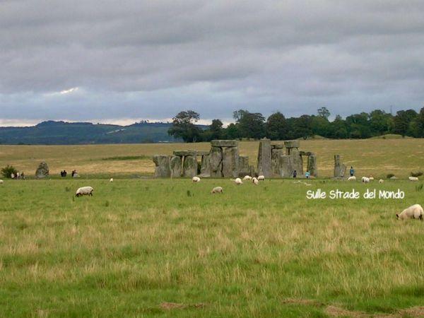 stonehenge pecore