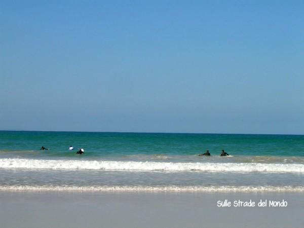 surfisti jeffrey's bay