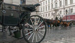Vienna Carrozza