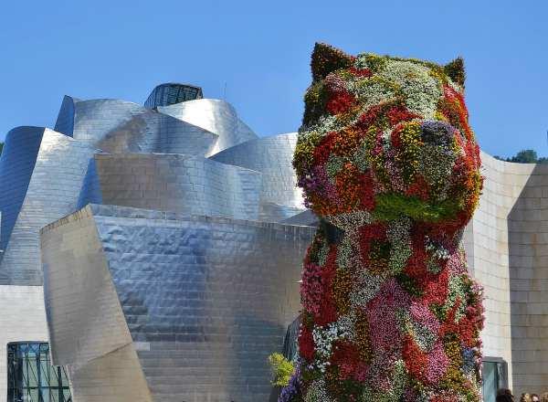 Bilbao cane fiorito