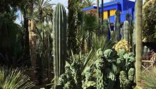 Marrakesh giardini