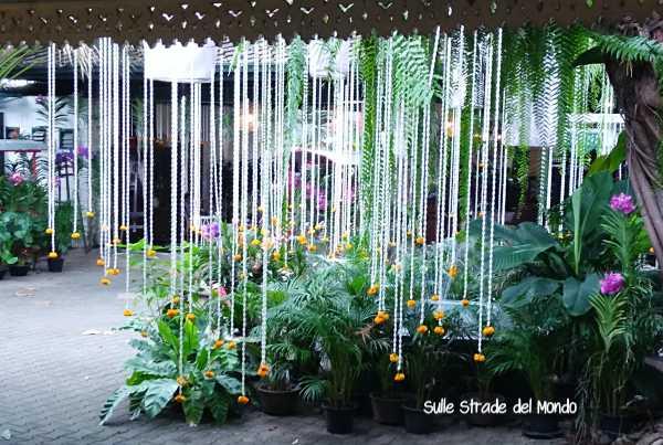 Museo cultura floreale Bangkok