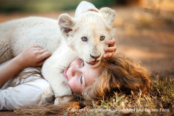 Leone bianco