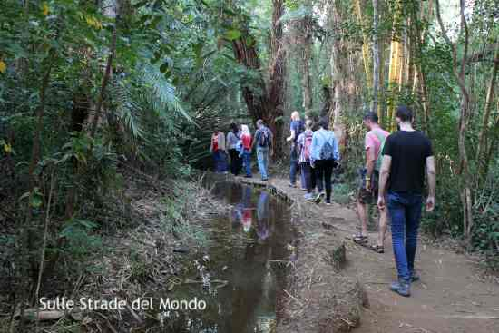 Escursione nella riserva di Nahampoana
