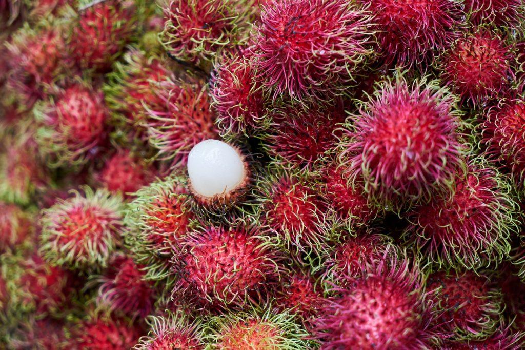 rangutan una della frutta che preferisco della thailandia