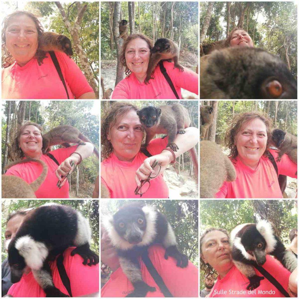 lemursi