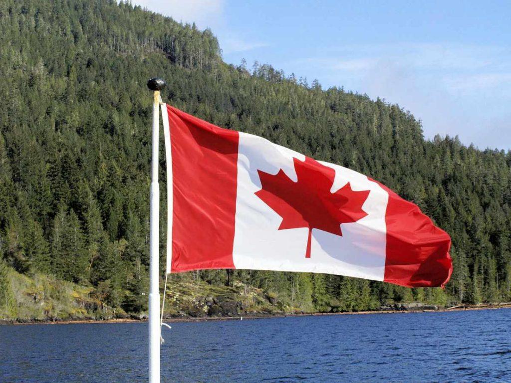Canada boschi e bandiera