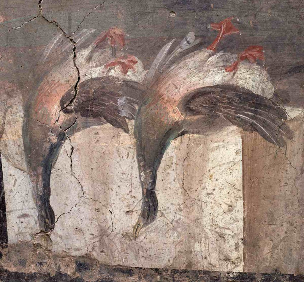 anatre pompei