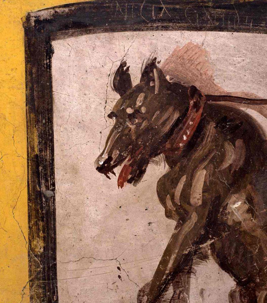 cane Pompei termopolio