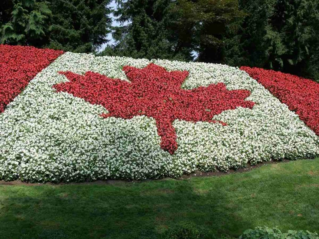 aiuola con la Bandiera del Canada