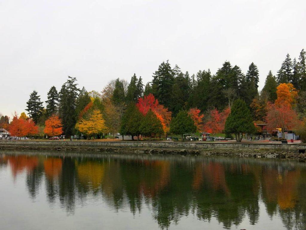 foliage canadese