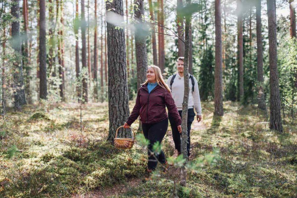 lahti città verde anche per la presenza di boschi