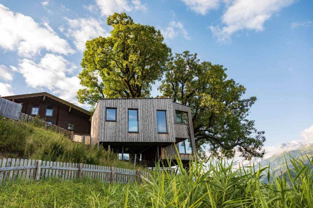 Nel salisburghese potete dormire in una casa sull'albero