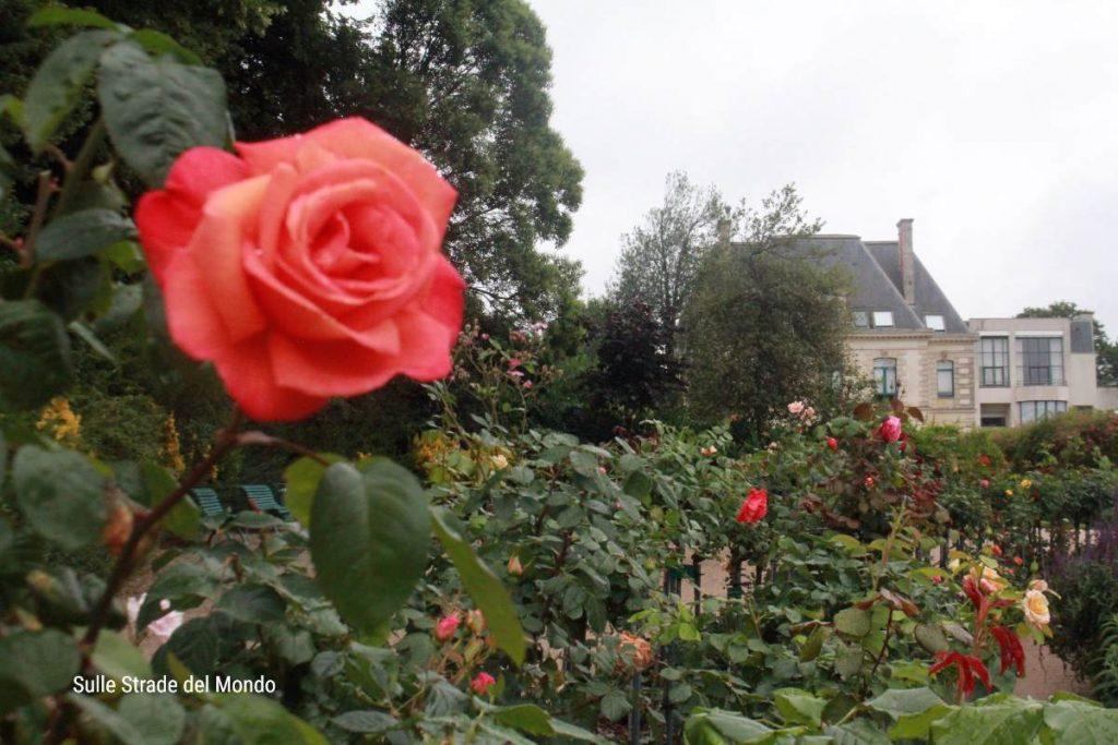 Le rose, il vanto del Parco Thabor a Rennes