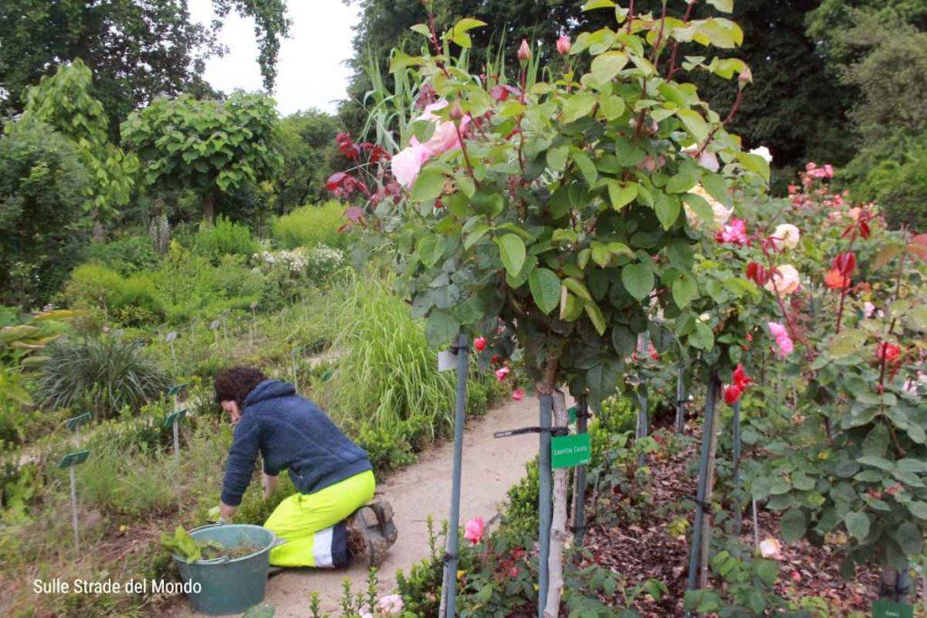 Giardinieri al lavoro