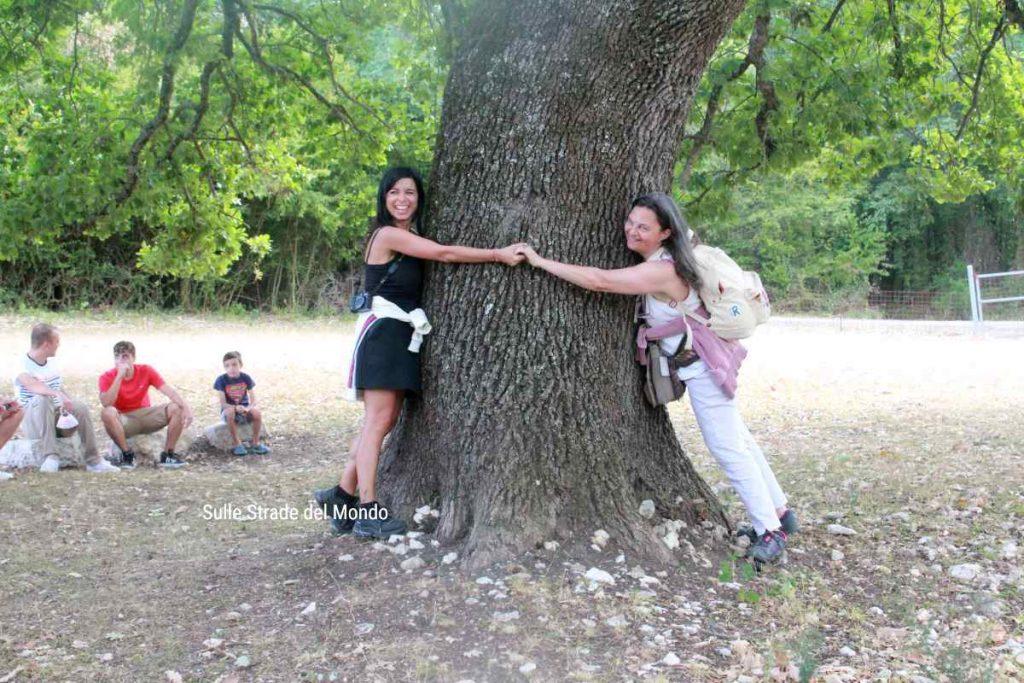 Abbracciare gli alberi a Le Campestre